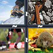 4 Pics 1 Word Answers 6 Letters