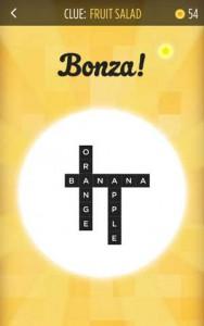 bonza-word-puzzle-001