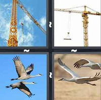4 Pics 1 Word Crane