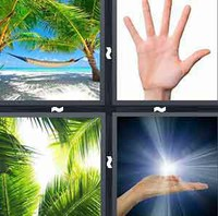 4 Pics 1 Word Palm