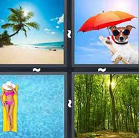4 Pics 1 Word Summer