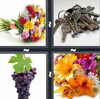 4 pics 1 word answers 5 letters pt 2 whats the word answers 4 pics 1 word bunch expocarfo Image collections