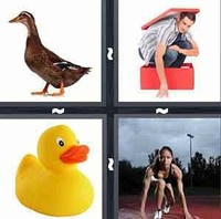 4 Pics 1 Word Duck