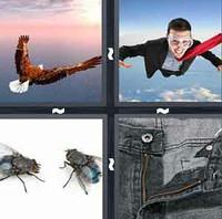 4 Pics 1 Word Fly