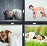 4 Pics 1 Word Sleep