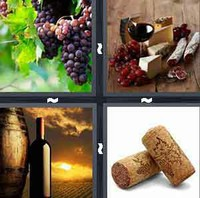 4 Pics 1 Word Levels Wine