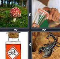 4 Pics 1 Word Levels Poison
