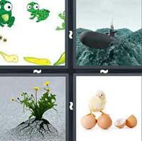 4 Pics 1 Word Levels Emerge