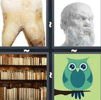 4 Pics 1 Word Wisdom