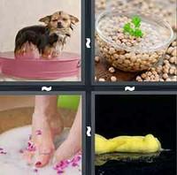 4 Pics 1 Word Soak