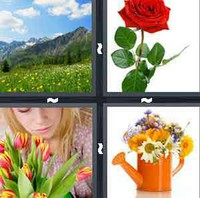 4 Pics 1 Word Flower