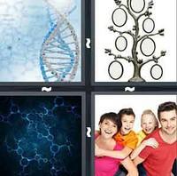 4 Pics 1 Word Levels Genetics
