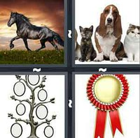 4 Pics 1 Word Pedigree