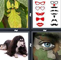 4 Pics 1 Word Disguise