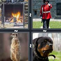 4 Pics 1 Word Guard