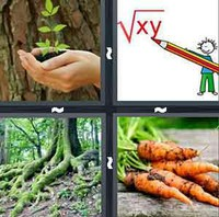 4 Pics 1 Word Levels Root