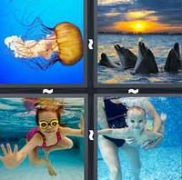 4 Pics 1 Word Levels Swim