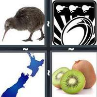 4 Pics 1 Word Levels Kiwi
