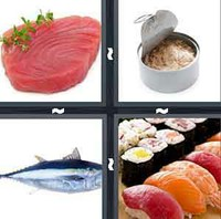 4 Pics 1 Word Levels Tuna