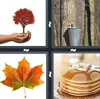4 Pics 1 Word Levels Maple