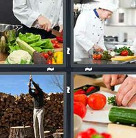 4 Pics 1 Word Chopping