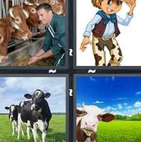 4 Pics 1 Word Cow