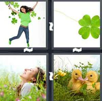 4 Pics 1 Word Levels Clover
