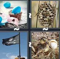 4 Pics 1 Word Nest