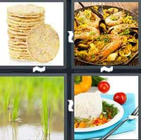4 Pics 1 Word Rice