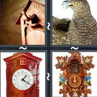 4 Pics 1 Word Levels Cuckoo