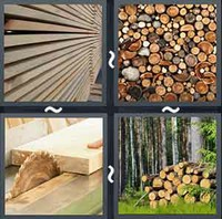 4 Pics 1 Word Levels Timber