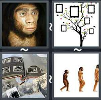 4 pics 1 word answers 8 letters pt 10 whats the word answers 4 pics 1 word ancestor expocarfo Images