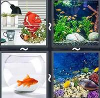 4 Pics 1 Word Aquarium