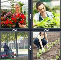 4 Pics 1 Word Gardener