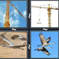 4 Pics 1 Word Levels Crane