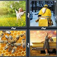 4 Pics 1 Word Levels Yellow