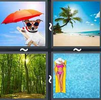 4 Pics 1 Word Levels Summer