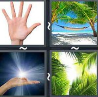 4 Pics 1 Word Levels Palm