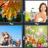 4 Pics 1 Word Seasons