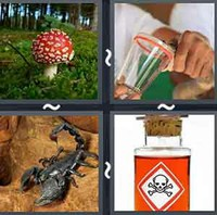 4 pics 1 word answers 6 letters pt 36 whats the word answers 4 pics 1 word poison expocarfo Image collections