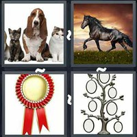 4 Pics 1 Word Pedigree