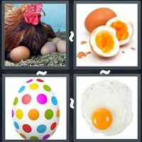 4 Pics 1 Word Levels Egg