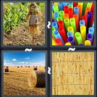 4 Pics 1 Word Levels Straw