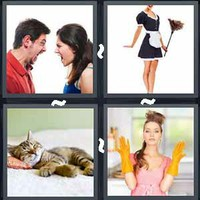 4 Pics 1 Word Levels Domestic