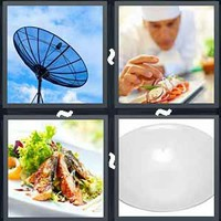 4 Pics 1 Word Dish