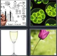 4 Pics 1 Word Stem