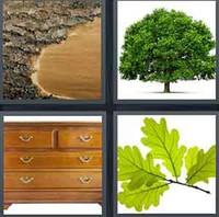 4 Pics 1 Word Oak