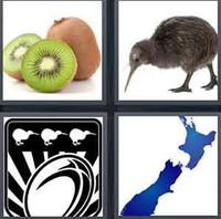 4 Pics 1 Word Kiwi