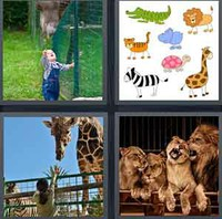 4 Pics 1 Word Levels Zoo