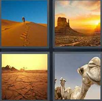 4 Pics 1 Word Levels Desert
